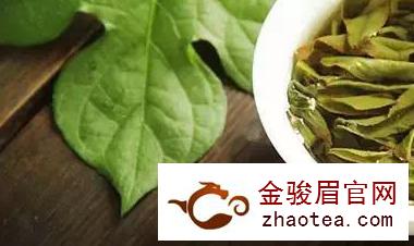 中医从药理,谈茶的功效