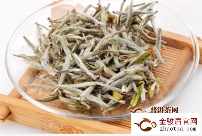 政和白茶一斤多少钱